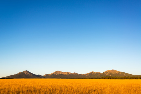 Bighorn Mountain Range in Wyoming bathed in the beautiful early morning light 写真素材