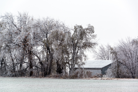 ice storm: Rural Kansas after an ice storm near the town of Burrton Stock Photo