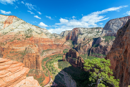 zion: Landscape view of Zion National Park in Utah