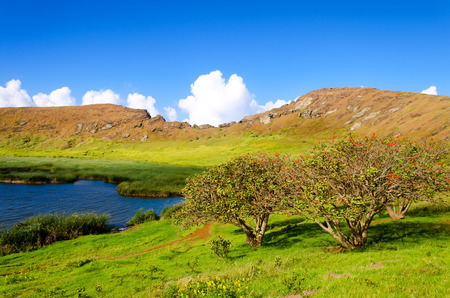 Lake and flowering trees in a crater in Easter Island, Chile