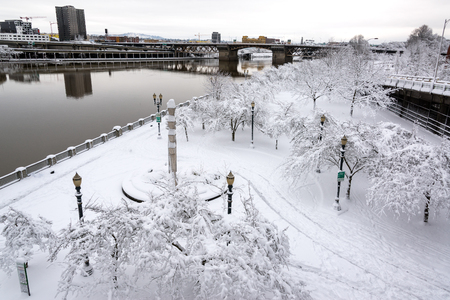 oregon  snow: Waterfront Park in Portland, Oregon covered in a foot of snow