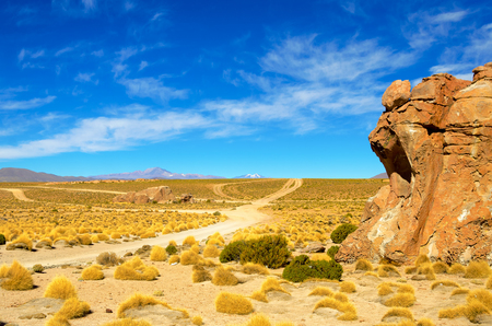 mountain landscape: Dirt road and beautiful landscape in the Valley of the Rocks near Uyuni, Bolivia