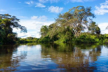 Flooded Amazon rain forest in Brazil