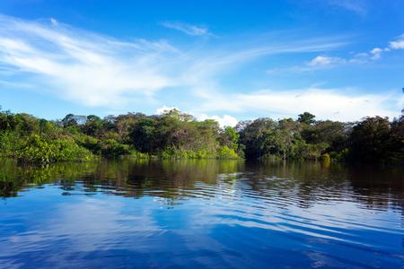 Beautiful landscape of the Amazon rain forest in Brazil Stock Photo