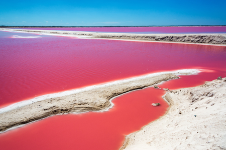 Striking red pool used in the production of salt near Rio Lagartos, Mexico Reklamní fotografie