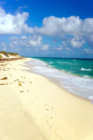 Beautiful sandy beach with nobody on it in the Sian Kaan Biosphere Reserve near Tulum, Mexico 免版税图像