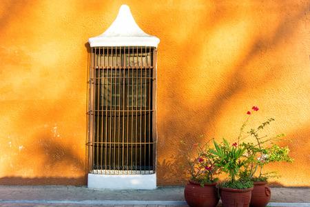 オレンジの植民地壁とバリャドリッド、メキシコの 3 つの鉢植えな植物のウィンドウ