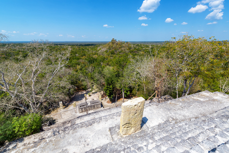 calakmul: View from the top of Structure One in Calakmul, Mexico Stock Photo