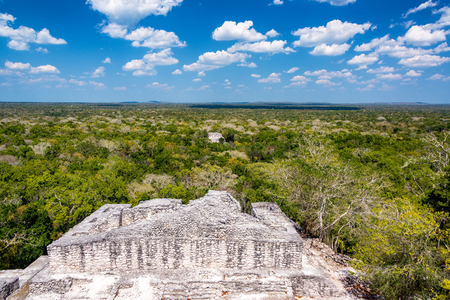calakmul: Beautiful view of the ruins and jungle and deep blue sky in Calakmul, Mexico