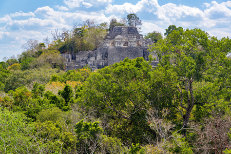 calakmul: View of huge pyramid in the ancient Mayan ruins of Calakmul, Mexico Stock Photo