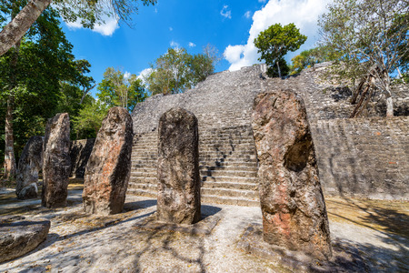 calakmul: Stellae at the base of structure seven pyramid in the Mayan ruins of Calakmul, Mexico