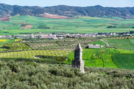Numidian Tower rising above olive trees in Dougga, Tunisia