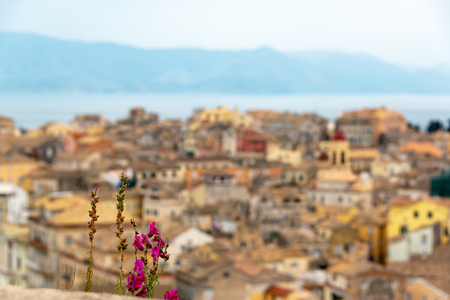 Flowers with an out of focus cityscape of Corfu, Greece in the background