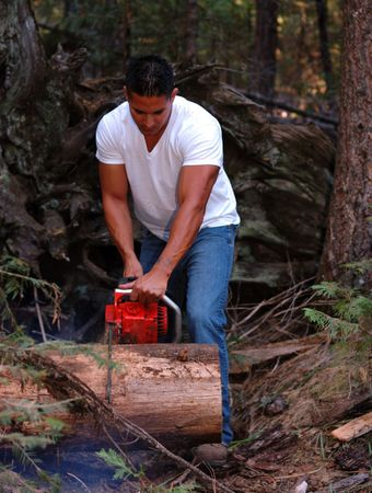 wood cutter: Image of male with chainsaw