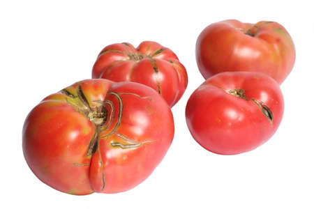 heirloom: Beautiful red heirloom tomatoes isolated on white