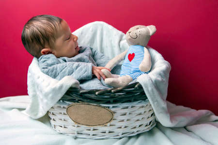 Newborn in a basket with a teddy bear Banque d'images