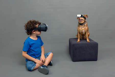 4-5 year old Caucasian curly-haired boy and his puppy with virtual reality glasses on a gray background Banque d'images
