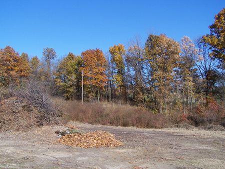 Fall in Missouri Stok Fotoğraf