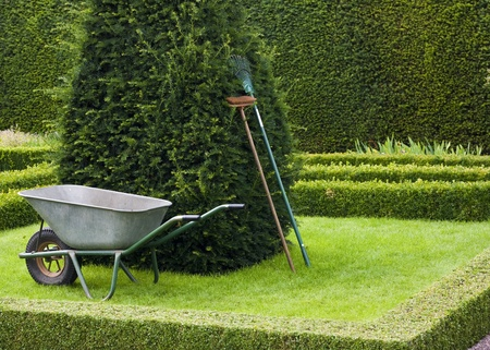 hedging: Gardening Tools. lawn rake, wheel barrow, and brush in English Knot Garden with copy space.