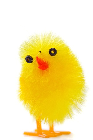 Macro shot of Easter chick isolated on white