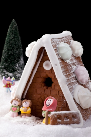 Gingerbread house on fake snow with model characters on black background.    photo