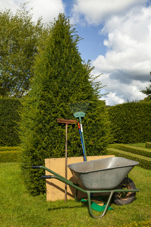 Garden tools leaning upright against a yew tree next to a wheel barrow in an Elizabethan style knot garden . photo