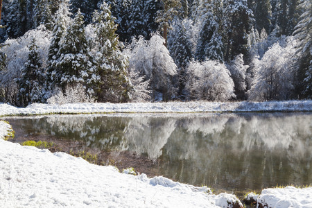 beautiful landscape formed by the snow over the night  Fish Camp in Yosemite National Park photo