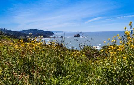 ビーチ ・ デル ・ ノルテ海岸州立公園で北のクラマス、カリフォルニア州 写真素材