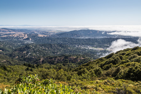 View of the Marin County bay area and Richarson bay from top of Mt. Tamalpais trail.
