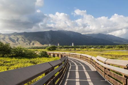 bird sanctuary: The Kealia Coastal Boardwalk is a beautiful tranquil walkway and bird sanctuary, beside Maalaea Bay, in the Kealia Pond National Wildlife Refuge, on the south edge of Maui�s central valley