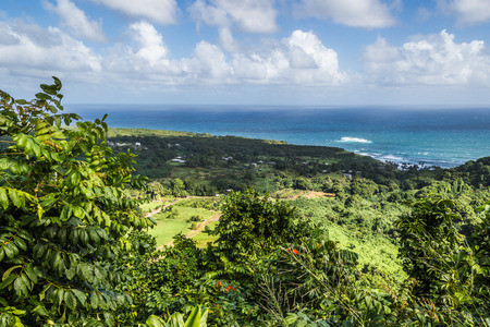 Great views of the Pacific Ocean and the East Maui coast line. View form the Road to Hana