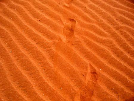 ochre: Footprints in the ochre desert