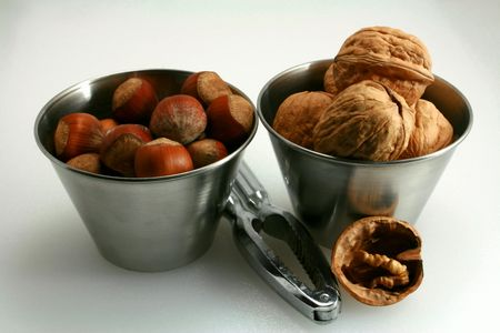 Tasting of walnuts and hazelnuts in autumn photo