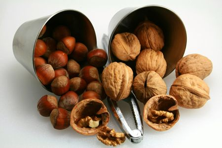Tasting of walnuts and hazelnuts in autumn photo