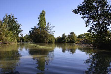 Swamp from Poitou