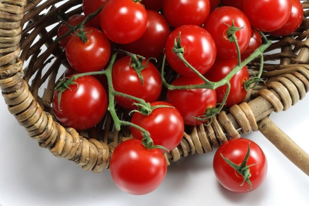 slightly: Basket of organic tomatoes