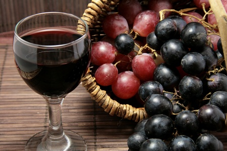 Tasting of wine in the French vineyard Stock Photo - 8367484
