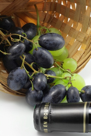 Tasting of wine in the French vineyard photo