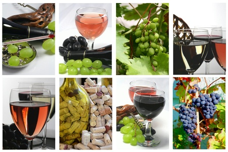 wine country: Tasting of glasses of wine