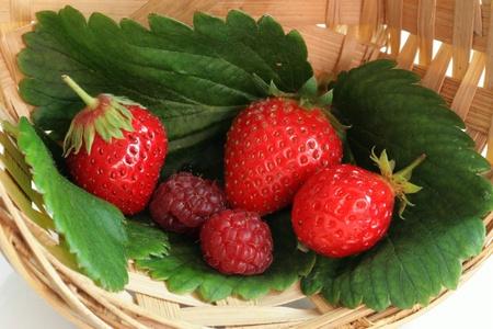 Basket of wild strawberries and raspberries Stock Photo - 8505887