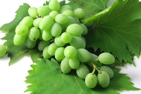 tastevin: Bunch of grapes in June