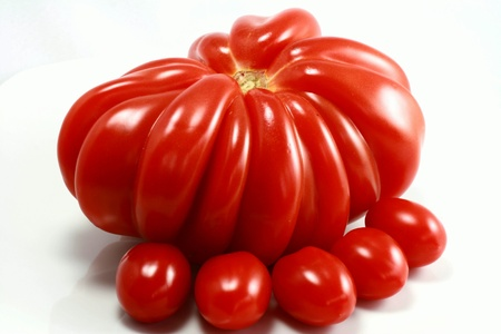 Rustic tomatoes in close-up photo