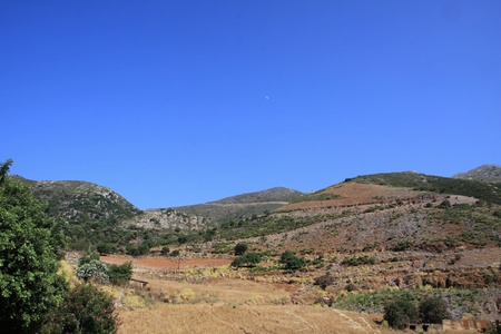 Landscape of Crete of the North with plantations of olives and the other varieties photo