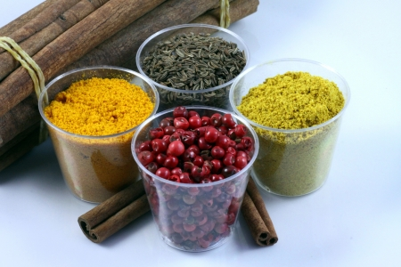 Mixture of spices Stock Photo - 14951496