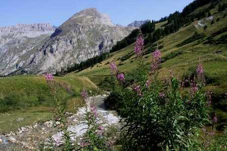 Landscape of high mountain in Savoy photo