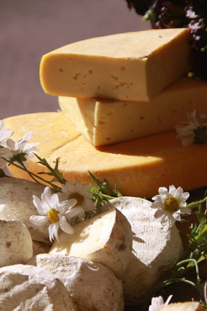speciality: Cheeses of Savoy - speciality Stock Photo