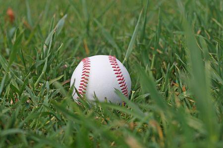 Baseball in the grass photo