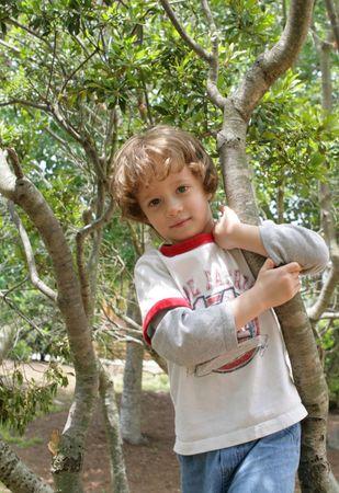 Un garçon et de son arbre  Banque d'images - 3113846