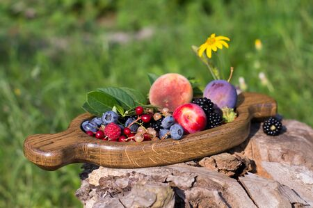 Fresh berries and fruits on a old-fashioned wooden plate on rotten stump. Countryside. Outdoor
