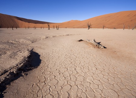 Peeling soil of where the water once were at Dead Vlei, Namibia Stock Photo - 7040198